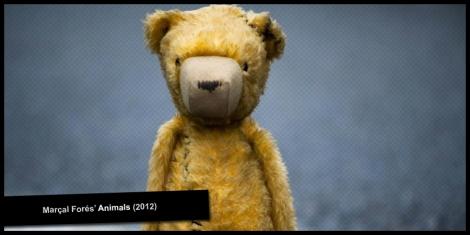 Escándalo Films presents Animals