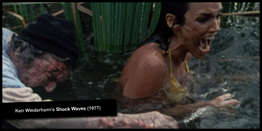Ken Wiederhorn's SHOCK WAVES